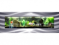 Stort Vegg Akvarium